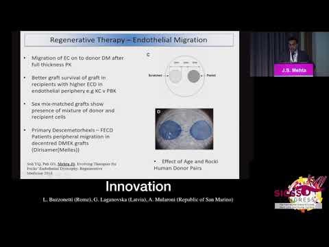 SICSSO 2018 - ENG - J. S. Mehta (Singapore) - Regenerative therapy for Peters Anomaly