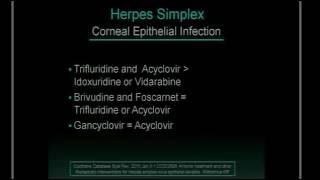 SICSSO 2016 - ENG - D. H. Scorsetti (Argentina) - Herpes Simplex Virus update