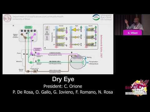 SICSSO 2018 - ITA - E. Villani (Milan) - New guidelines of DEWS II