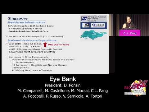 SICSSO 2018 - ITA - C. L. Pang (Singapore) - How it works in Asia