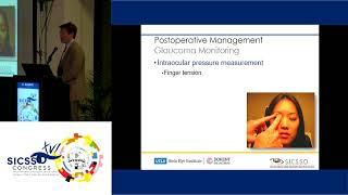 SICSSO 2017 - ITA - A. Aldave (USA) - The Boston Type I Keratoprosthesis: Prevention, Monitoring and