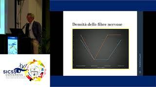 SICSSO 2017 - ENG - C. Cagini (Perugia) - Study to stimulate the nerve fibers growth
